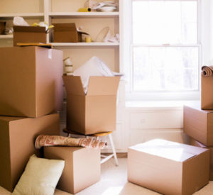movers-moving-packing-professional-organizer